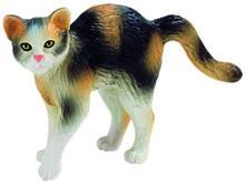 Pisica Domestica Moritz