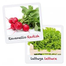 Set Creativ Pentru Copii Gioca Green Plantare Si Crestere Salata Ridiche Quercetti imagine